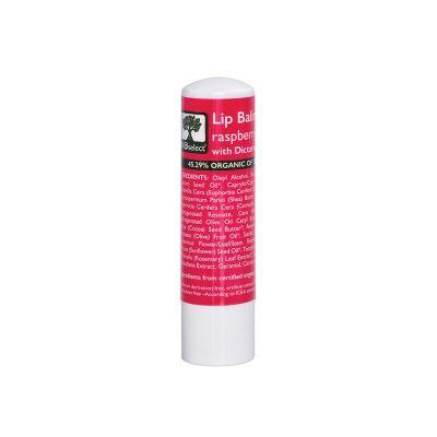 BioSelect Organics 100% Organic Lip Balm Για Τα Χείλη Βατόμουρο 4,4g